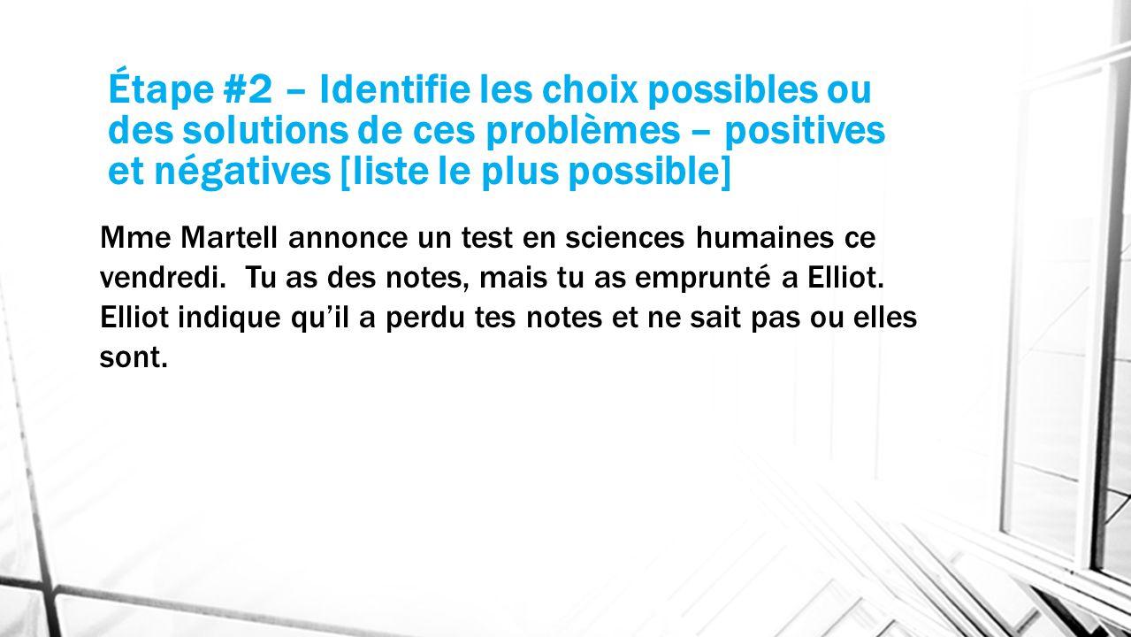 Étape #2 – Identifie les choix possibles ou des solutions de ces problèmes – positives et négatives [liste le plus possible]